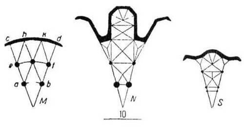 Применение нервюрного свода в готической архитектуре. Своды  кольцевых галерей. Перекрытие двух концентрических кольцевых галерей