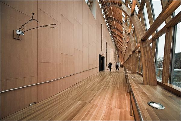 Фрэнк Гери (Frank Gehry): Art Gallery of Ontario